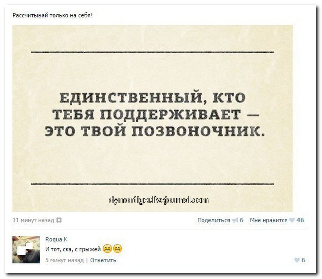 Смешные комментарии из социальных сетей 25.12.15