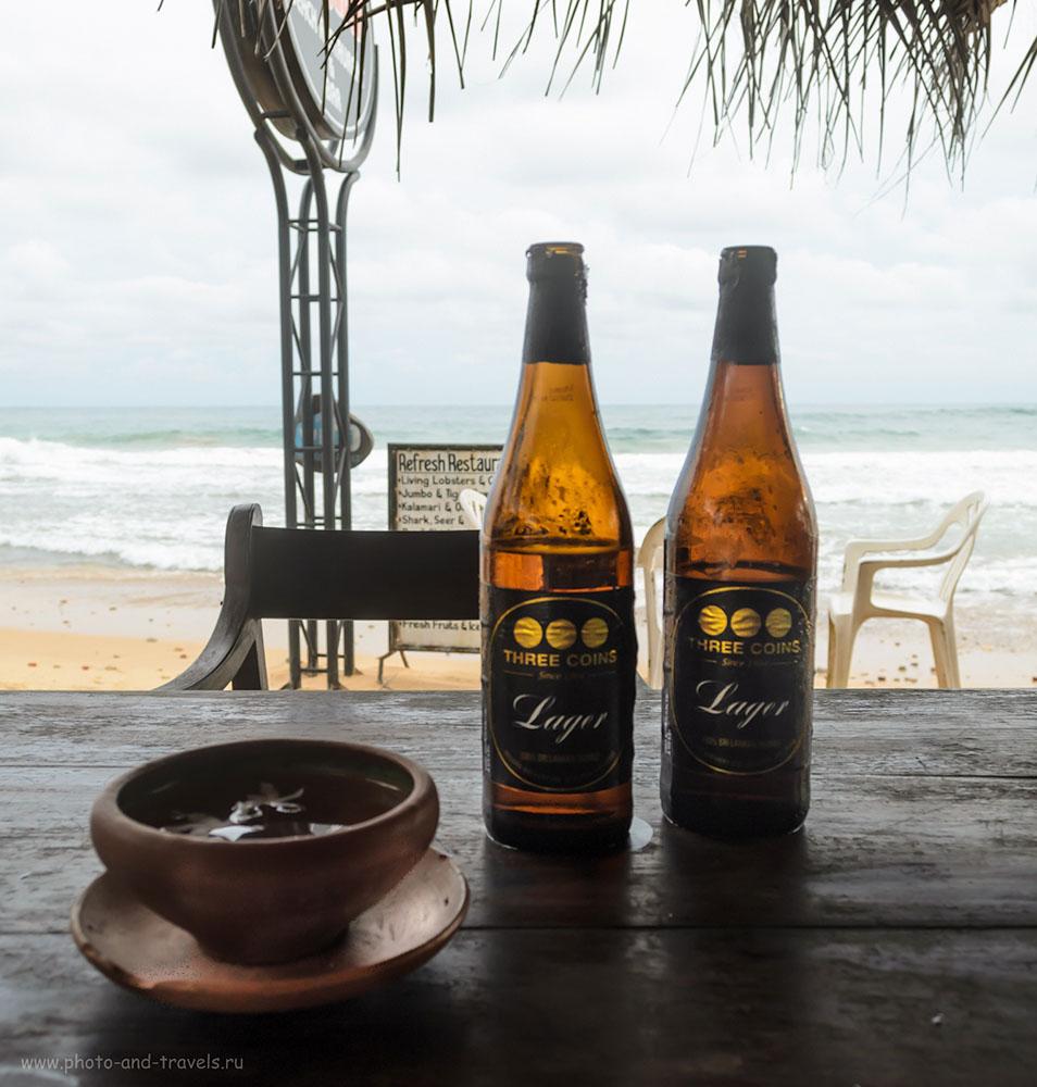 Фото 15. Жареные осьминоги, бутылочка пива и Индийский океан.... День Рожденья.... Куда поехать отдыхать на море весной? На Шри-Ланку. Отчет о пляжном отдыхе в Хиккадуве самостоятельно.