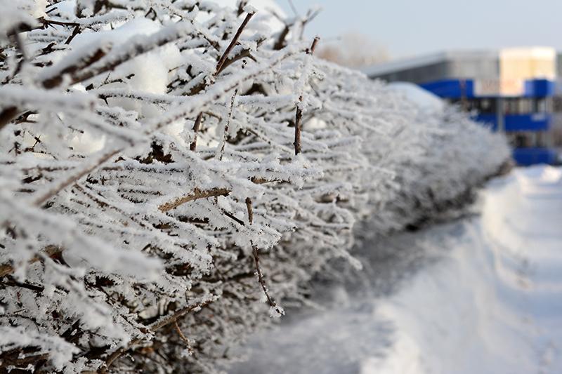 ещё зима 2