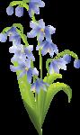 Коллекция клипарта красивейших рисованных цветов Цветущая Сакура Png