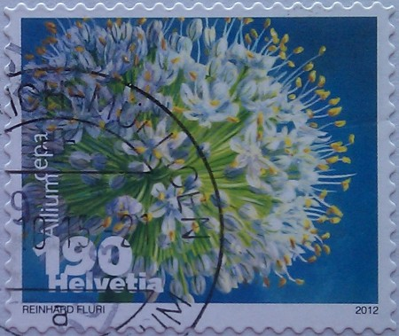 щвейцария 2012 лук 190
