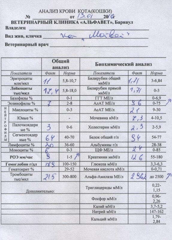 Кислоту натощак мочевую крови на или анализ анализ крови грудничка общий у