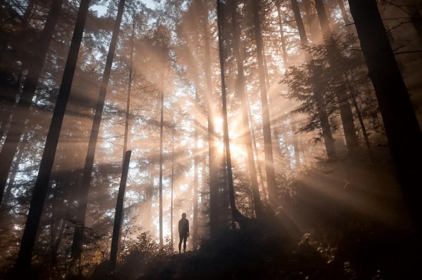 «Фотографии, дышащие воздухом и свободой» от Элизабет Гэдд (Elizabeth Gadd)