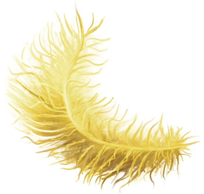 emeto_TheScaryPirates_feather yellow.png
