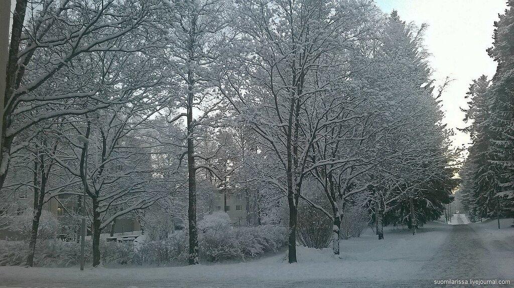 Прогулка в морозную погоду, -22.