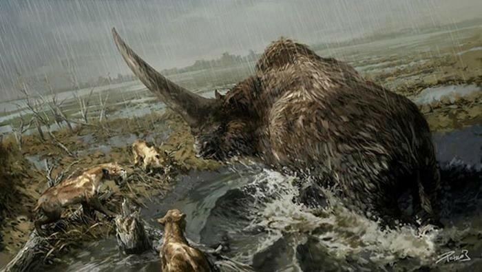 Древние животные, которые жили на территории России