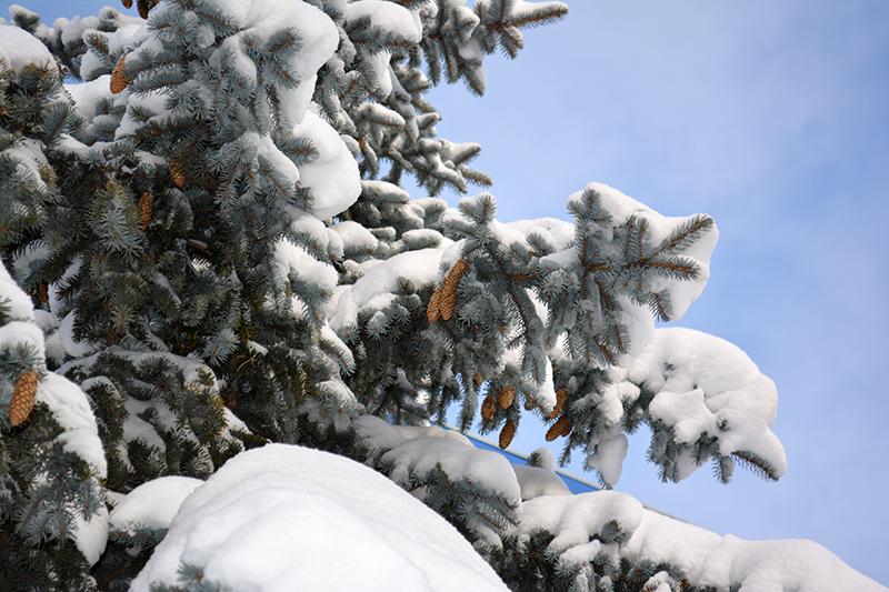 ещё зима 4