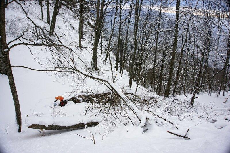 Родник под индюшкой в снегу