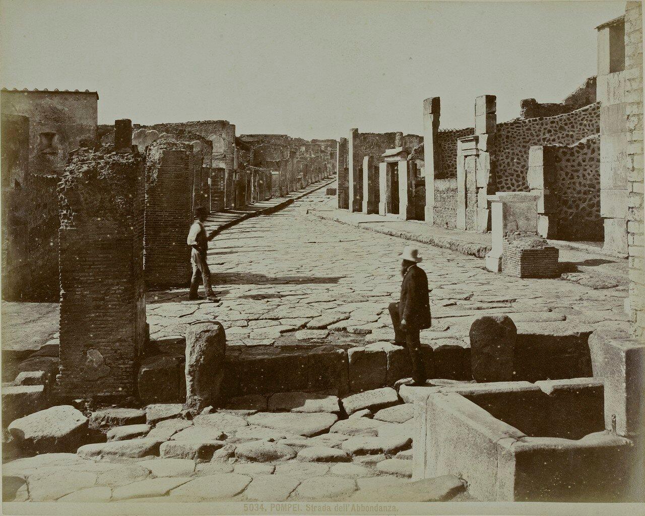 1880. Дорога Изобилия