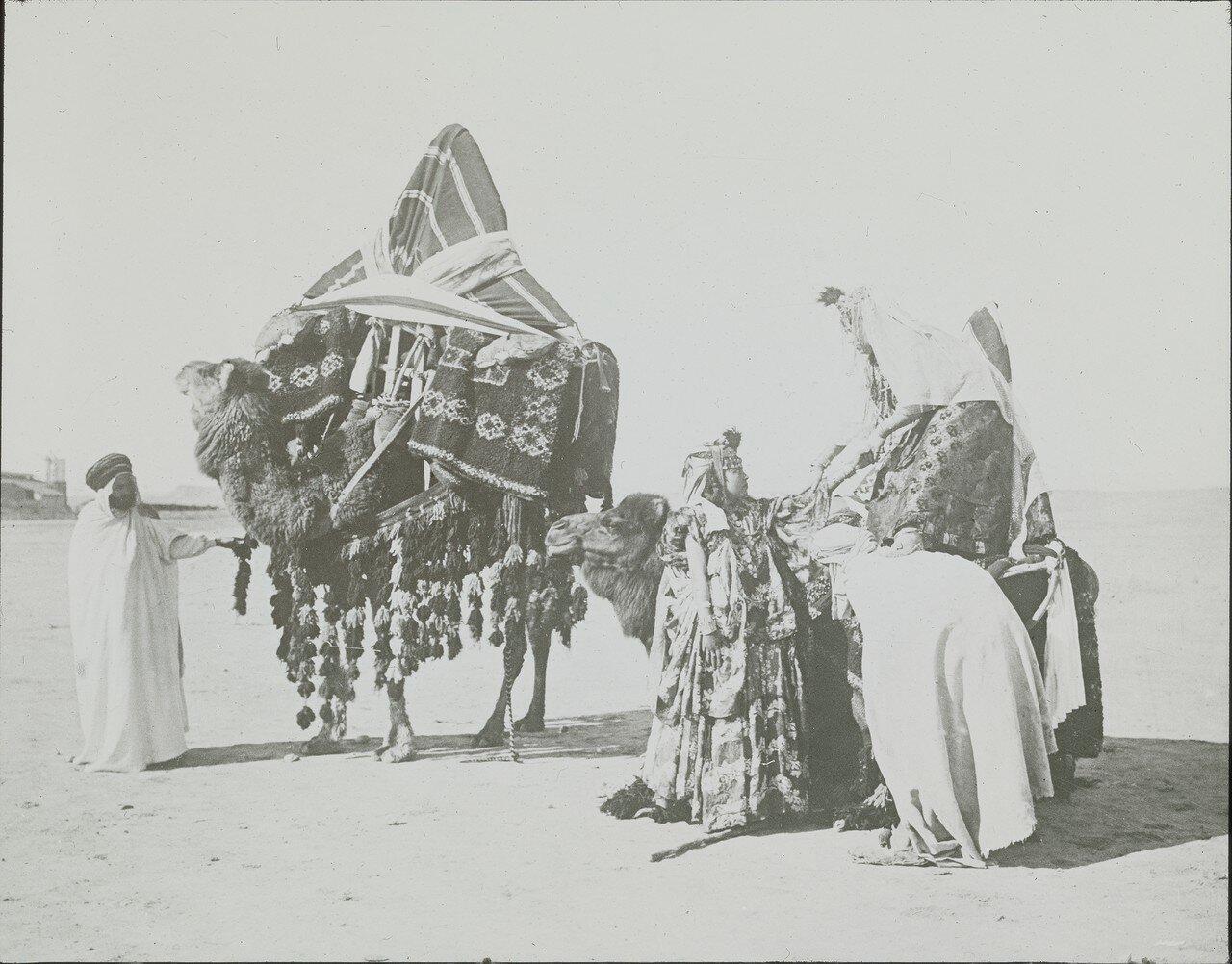 Арабская семья с груженными верблюдами