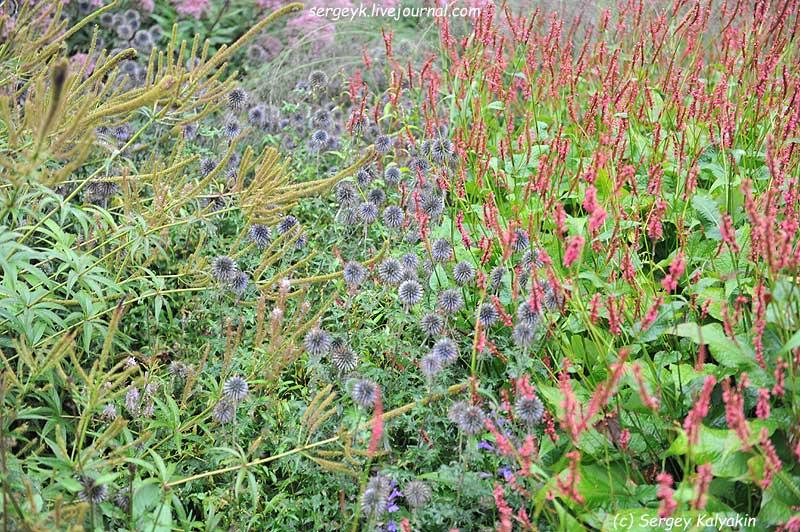 Trantham Gardens 080.JPG