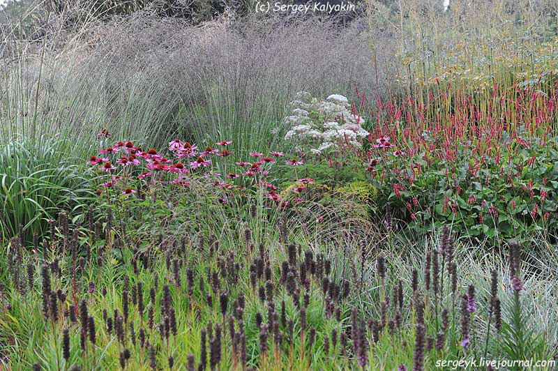 Trantham Gardens 490.JPG