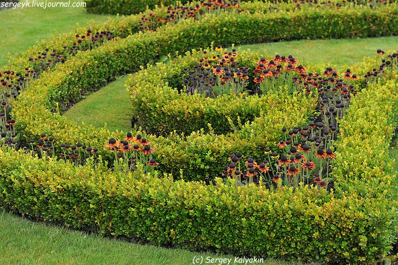 Trantham Gardens 655.JPG