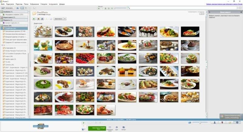 Совместное использование Picasa 3.1 и Я фотограф