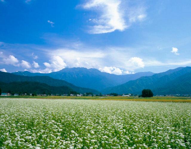Японские просторы. Красивые фотографии Японии от Накамура