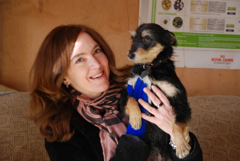 Джулия собака из приюта догпорт