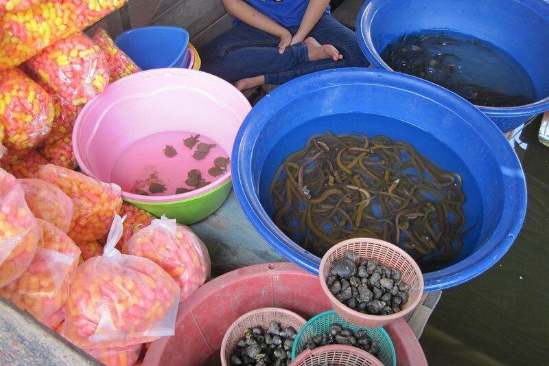 Маленький черепашки в тазиках, улитки, угри и корм для сомов в пакетах на плавучем рынке Талинг Чан