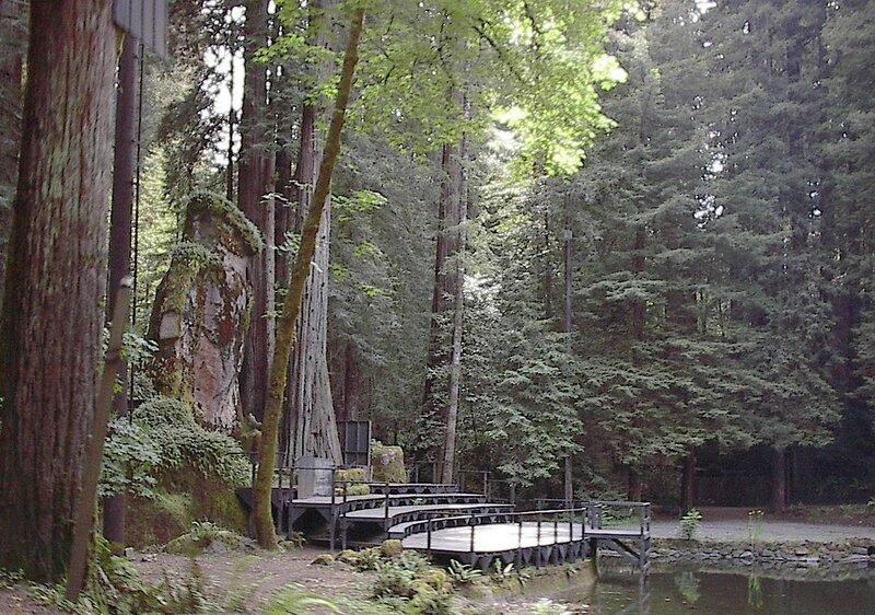 Богемская роща (Монте-Рио, Калифорния)