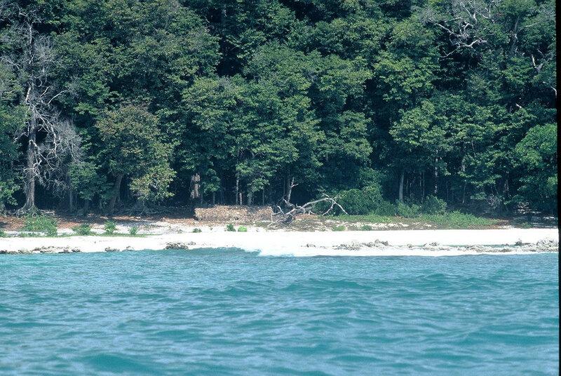 Северный Сентинельский остров (Андаманские острова)