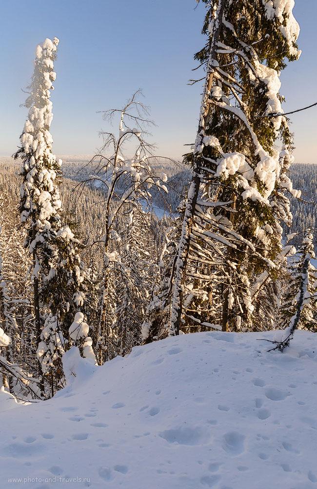 13. Вид на зимнюю тайгу с уровня грота Столбовой. 1/250, 0.33, 8.0, 500, 24.