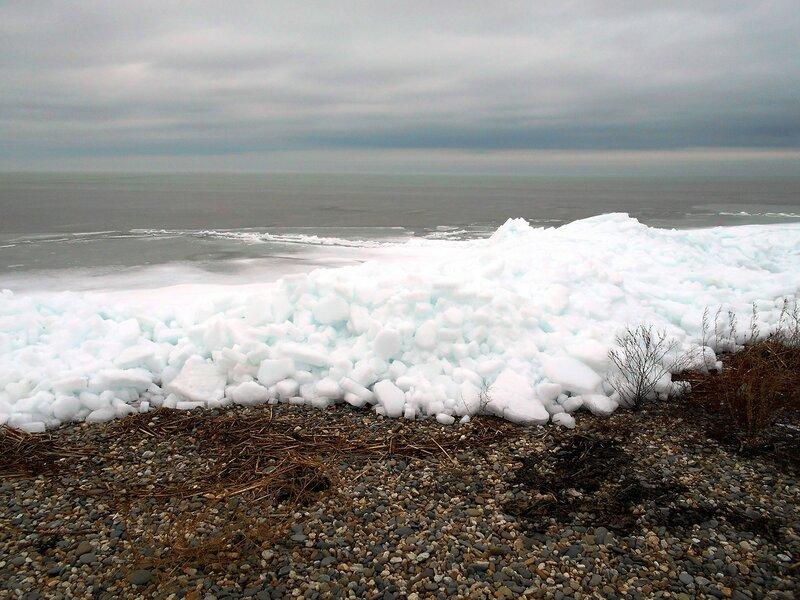 У моря, в январе ... DSCN3296.JPG