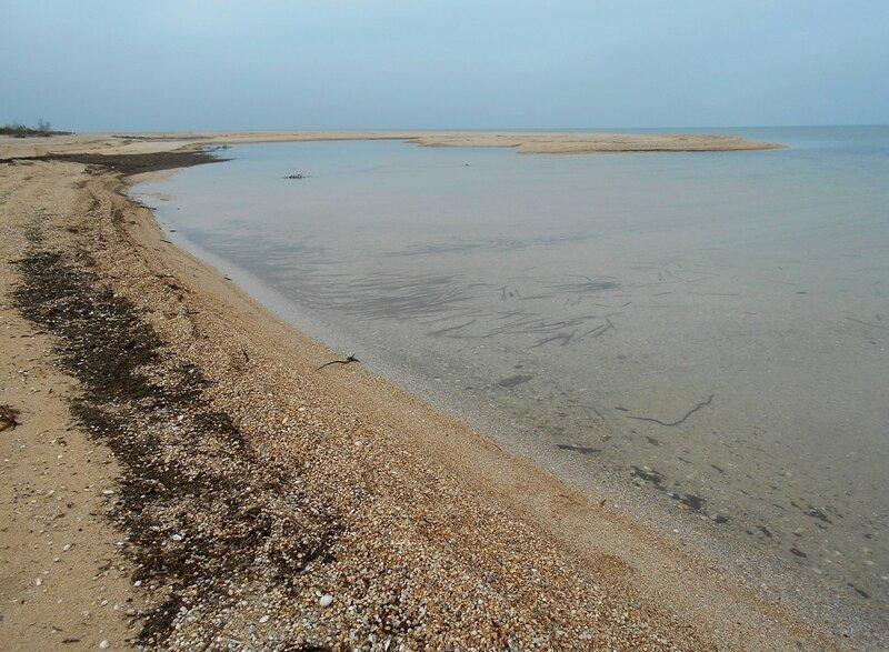 У моря, берег февральский ... песчаный ... DSCN4197.JPG
