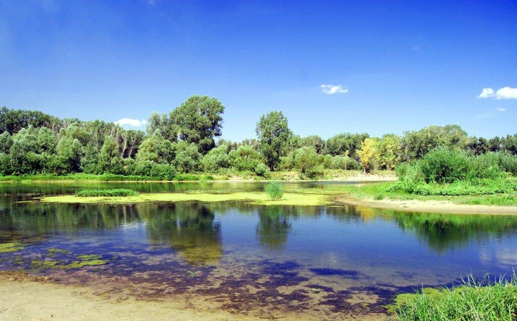 река Сок.jpg