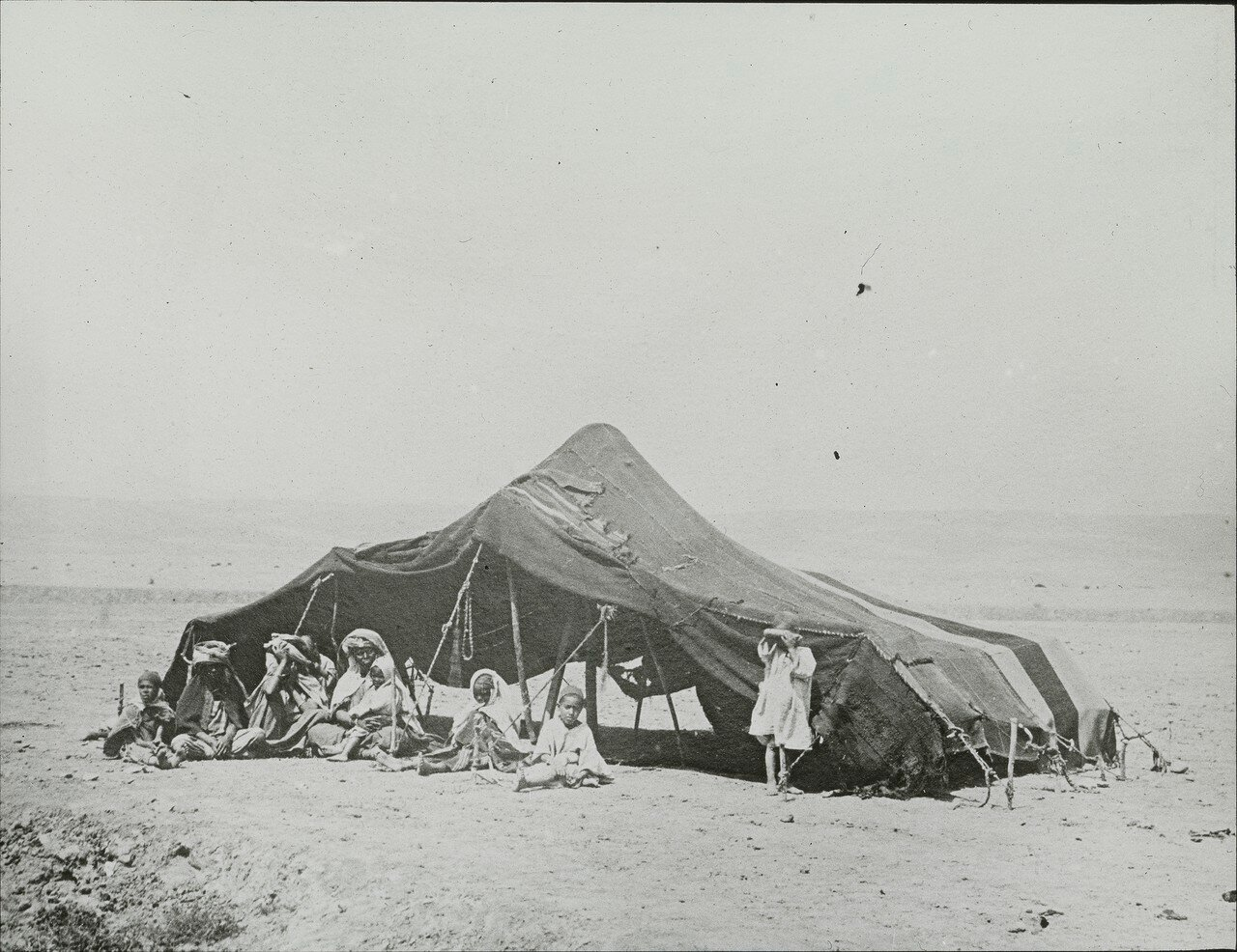 Лагерь бедуинов в  окрестностях Бискры, Алжир