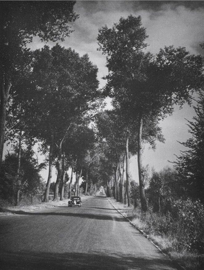 1946. Без названия (Дорога в Алье)