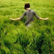 Девушка в высокой траве
