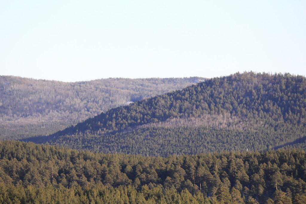 гора Барсучья