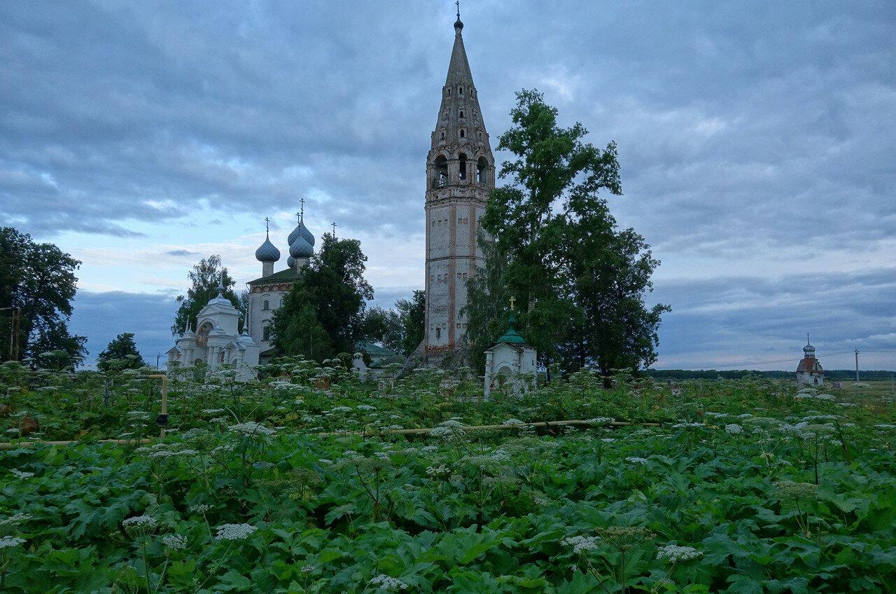 храм и борщевик