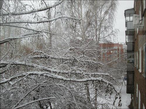 Зима-2015.jpg