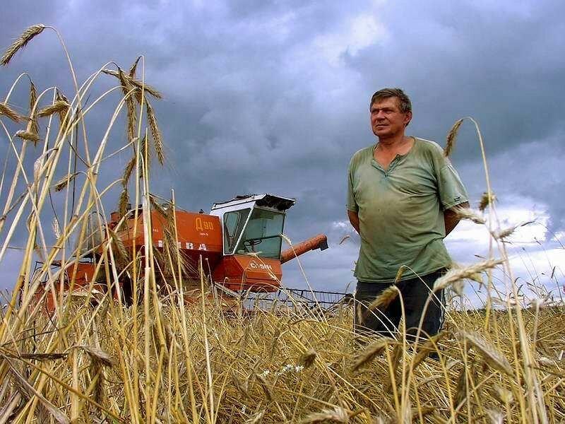 Фрилансерам и фермерам пенсии платить не будут! Че за хрень?