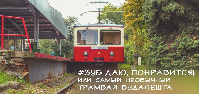 zubchatyj_tramvaj-v-budapeste.jpg