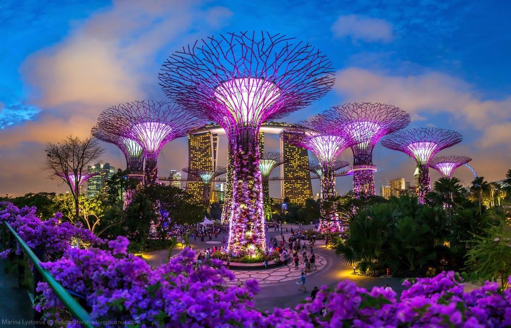 Тропический парк «Сады узалива» днем, Сингапур.
