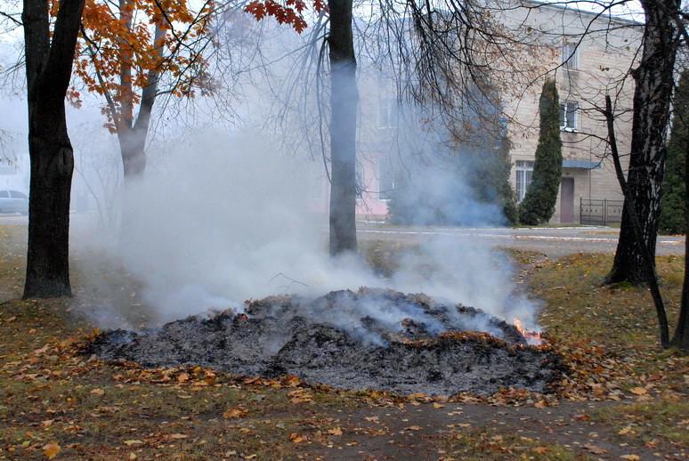Ямпіль в диму від спалювання опалого листя, фото-2