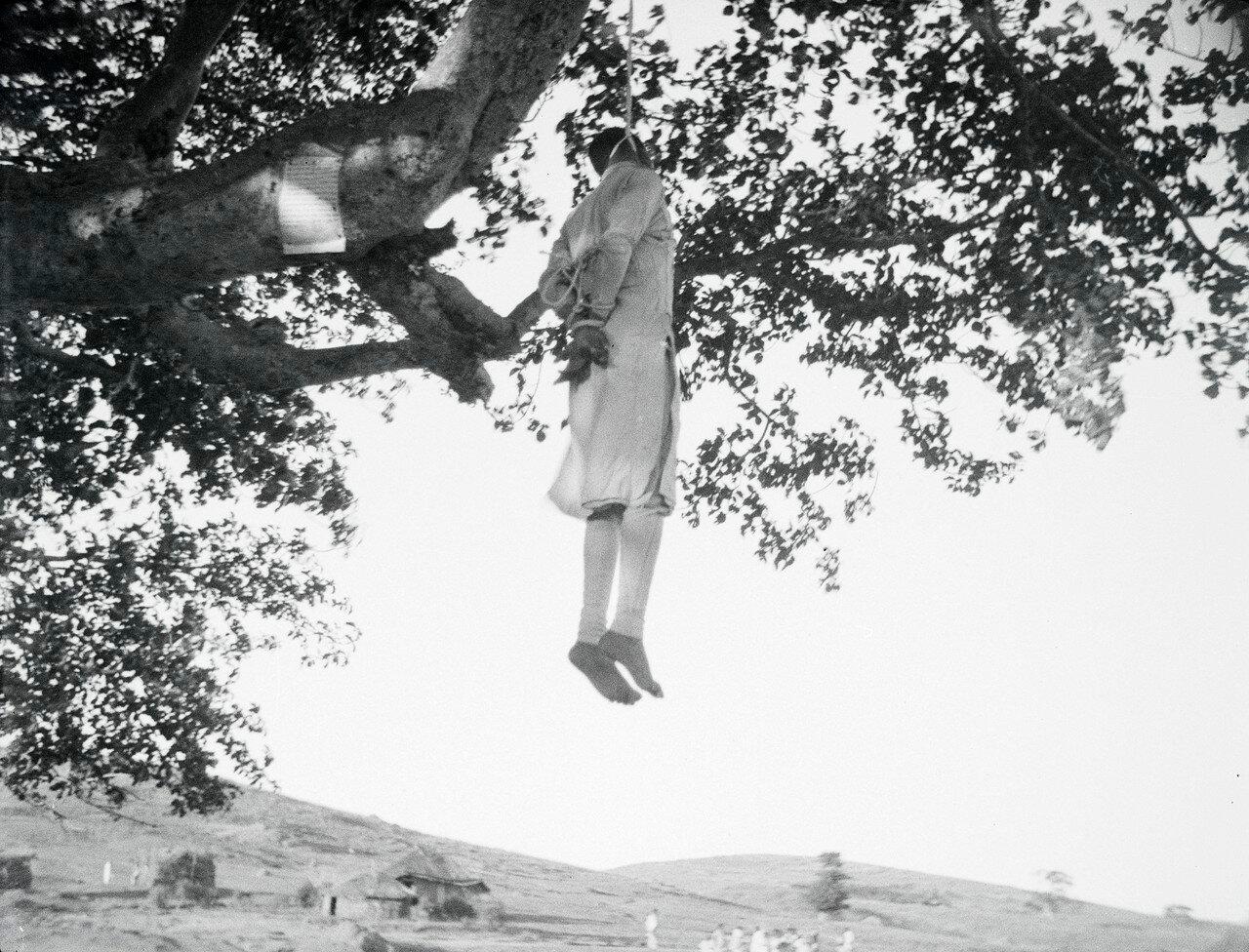 Казненный преступник, оставленный на дереве для острастки