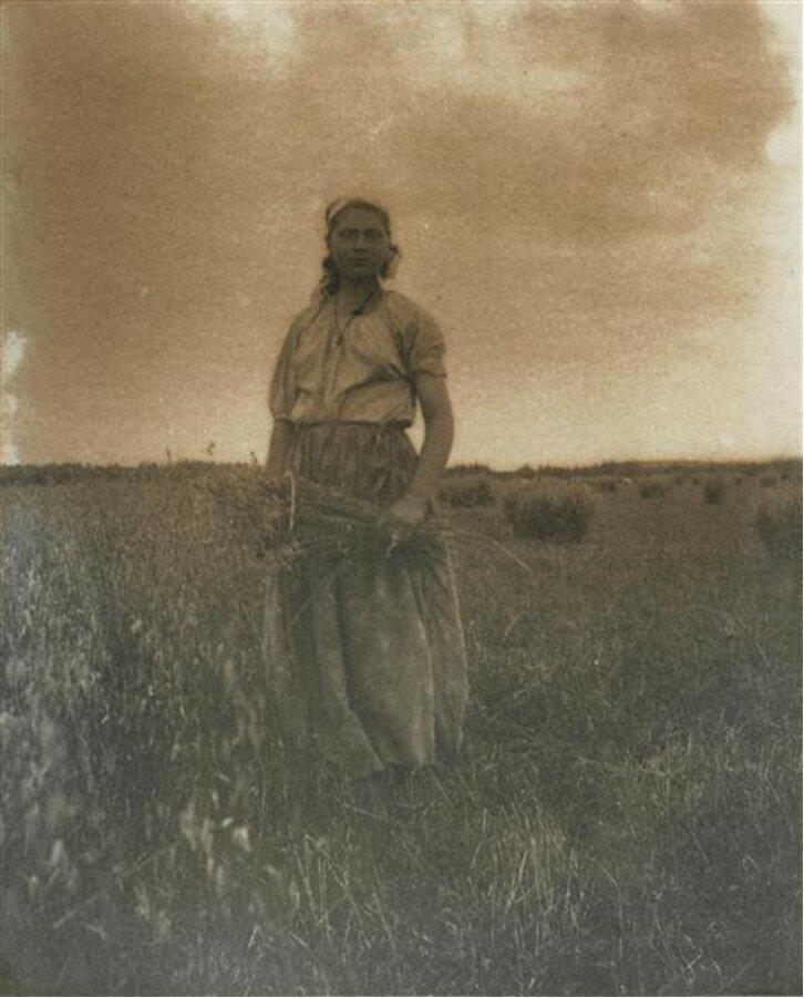1898. Жница