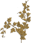 «скрап наборы IVAlexeeva»  0_8a122_9c55f8bd_S