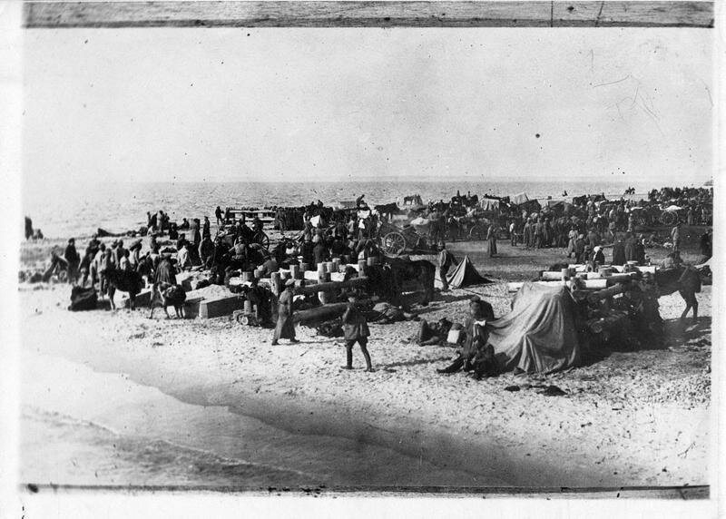 1919. Во время Исхода. Багаж и крупно-рогатый скот, ожидают на берегу погрузки
