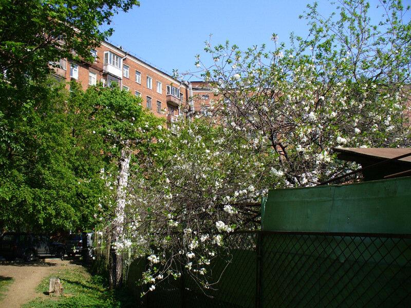 9 мая 2010 года, прогулка вокруг и около, Москва, Лефортово