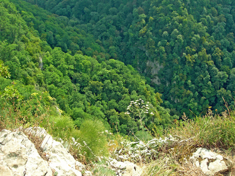 Обрыв, photo foto fotki history россия адлер сочи кавказ кавказские горы пейзаж фото фотки апарышев
