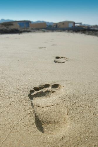 Оставляем следы на песке....jpg