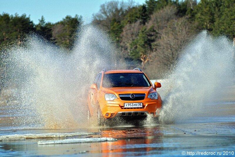Opel Antara - львенок и черепаха
