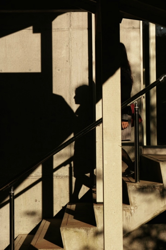 Light and shadow, Sumiyo Toda80.jpg