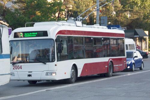 Бельцы на всё утро остались без троллейбусов