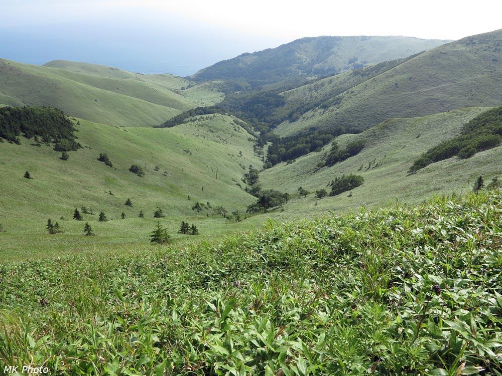 Долина р. Павловка