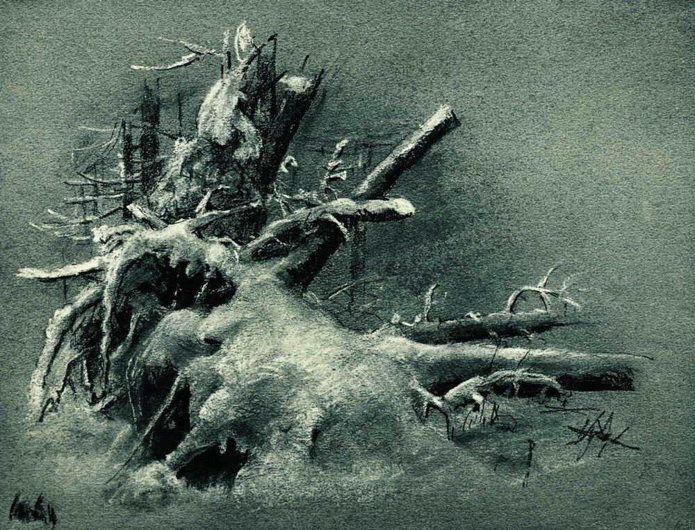 Выкорчеванные пни под снегом 1890-е Бумага.уголь,мел 23,8х31.1.jpg