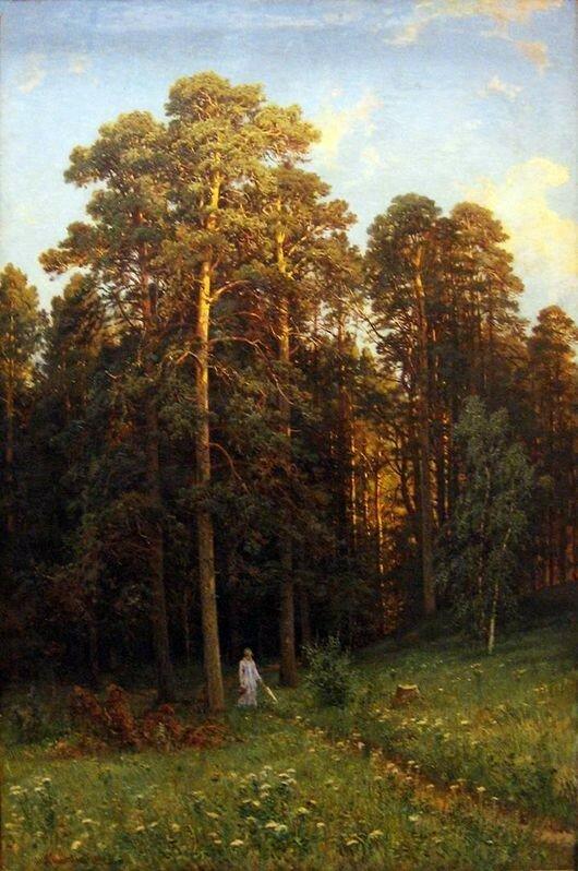 На опушке соснового леса,1882.